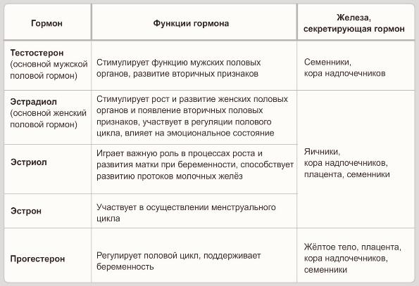muzhskoy-i-zhenskiy-seksualnie-gormoni
